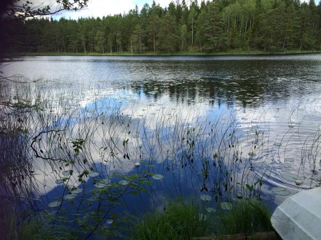 Am Roasjön