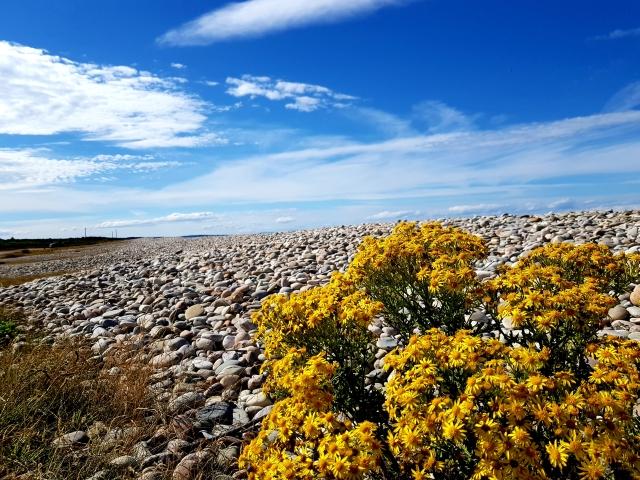 Strand an der Nordostküste bei Garmouth